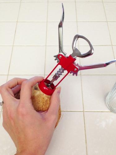 Coconut H2O