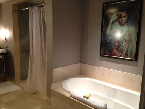 Cosmo suite bathroom #2