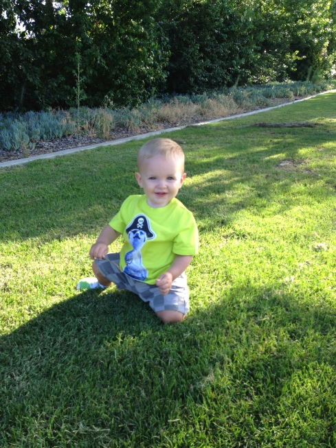 outside, sunshine, park, grass, happy, baby